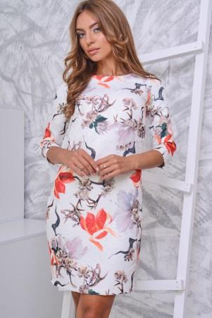 Carica: Платье KP-5795 - главное фото