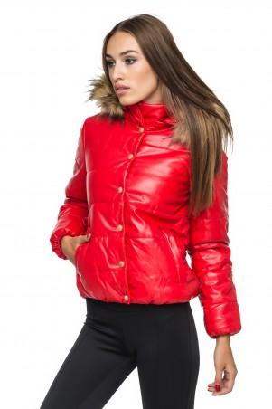 0101: Куртка 1027 - главное фото