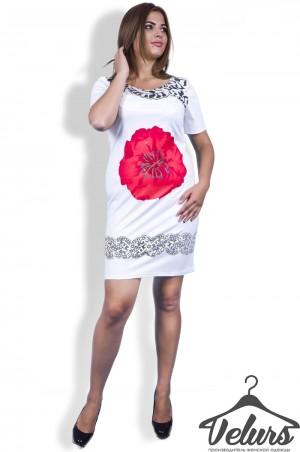 Velurs: Платье 212070 - главное фото