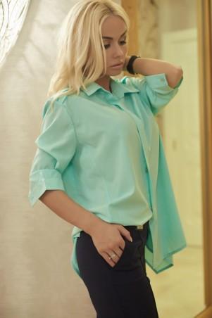 Lux Look: Рубашка Янель 254 - главное фото