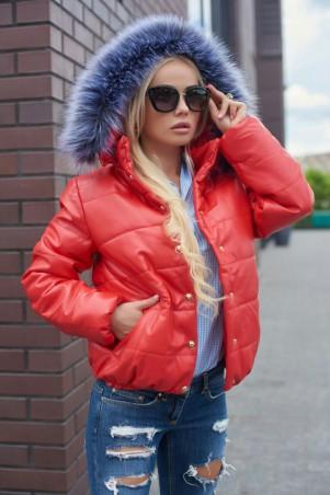 Lux Look: Куртка Кожа короткая 391 - главное фото