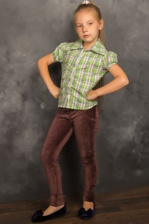 Tashkan: Рубашка Кантри 563 - главное фото