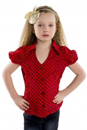 Tashkan: Блуза Горошины 566 - главное фото