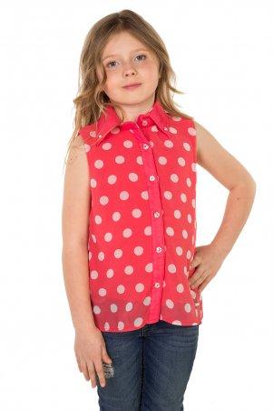 Tashkan: Блуза Рок-н-ролл 1031 - главное фото
