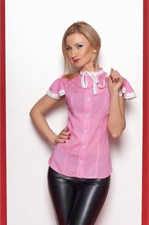 S&L: Блуза 347 - главное фото