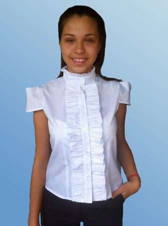 Kot-e: Блуза для девочки(к/р) 7109 - главное фото