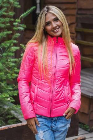 SK HOUSE: Куртка 2097 2097 - главное фото