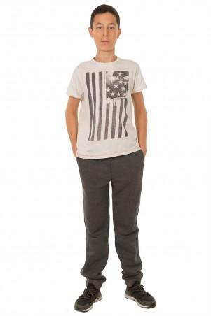 Tashkan: Спортивные брюки Энтони 1387 - главное фото