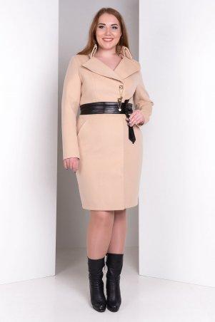 Modus: Пальто «Магия Donna» 5496 - главное фото