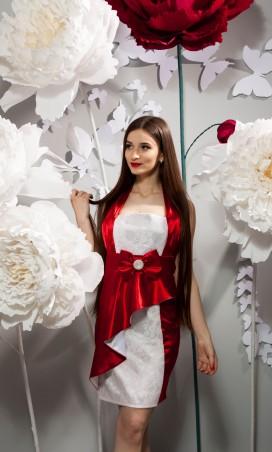 Salma: Платье Пелерина - главное фото