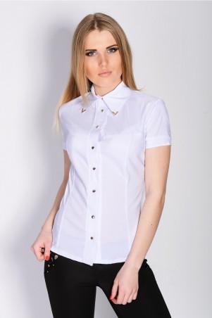 Irvik Trend: Блуза 14005A - главное фото