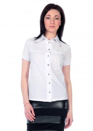 Irvik Trend: Блуза 14010 - главное фото