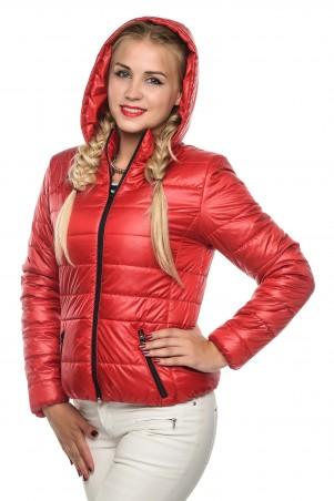 Кариант: Куртка деми Карина-красный - главное фото