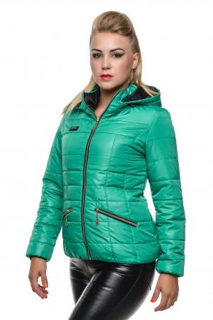 Кариант: Куртка деми Анжелика-трава - главное фото