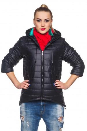 Кариант: Куртка деми Амина-черный - главное фото