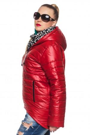 Кариант: Куртка деми Амина-красный - главное фото