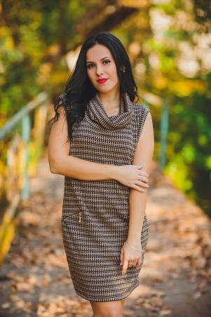 BIBI-Brand: Платье Бонита хомут коричневый - главное фото