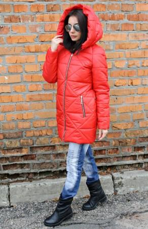 K&ML: Зимняя куртка Парка18 - главное фото