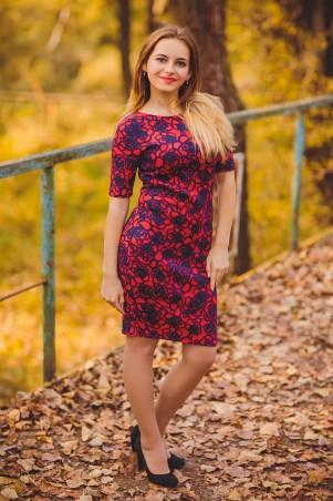BIBI-Brand: Платье Hawana красный - главное фото