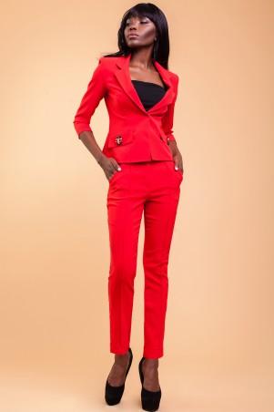 Jadone Fashion: Костюм (с брюками) Терри_2 (М2) - главное фото