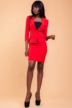 Jadone Fashion: Костюм (с юбкой) Терри_1 (М3) - главное фото