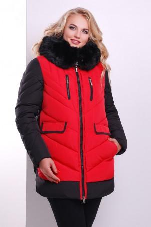 Glem: Куртка Куртка 883 - главное фото