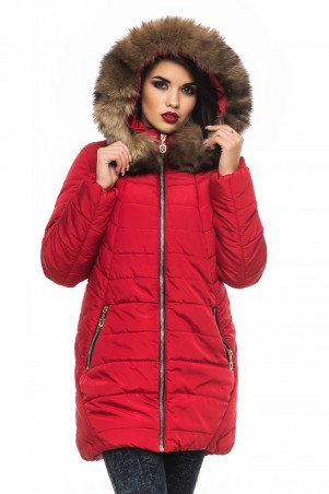 Кариант: Куртка зима Барбара-красный - главное фото