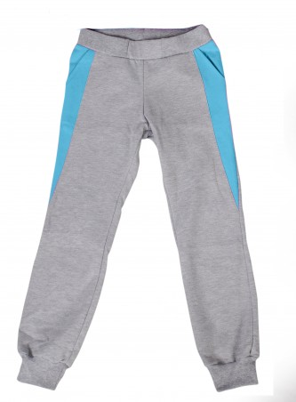 Lejeko: Спортивные штаны утеплённые 0105.2 - главное фото