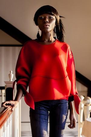 Jadone Fashion: Свитшот Вилли М-2 - главное фото