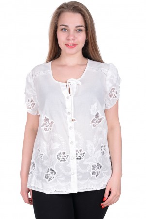 Alenka Plus: Блуза 1520-15 - главное фото