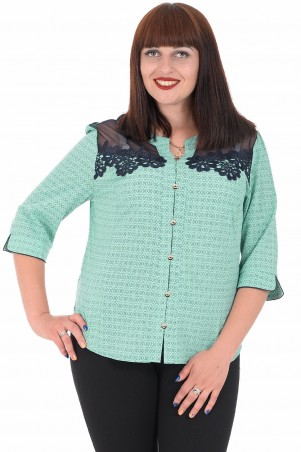 Alenka Plus: Блуза 1536-11 - главное фото