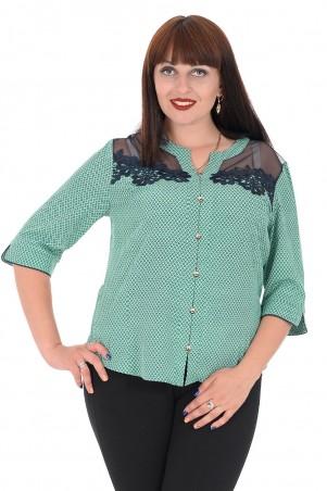 Alenka Plus: Блуза 1536-13 - главное фото