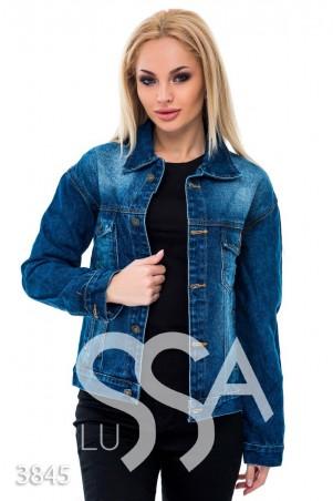 ISSA PLUS: Синяя джинсовая куртка с надписью LOS ANGELES на спине 3845_синий - главное фото