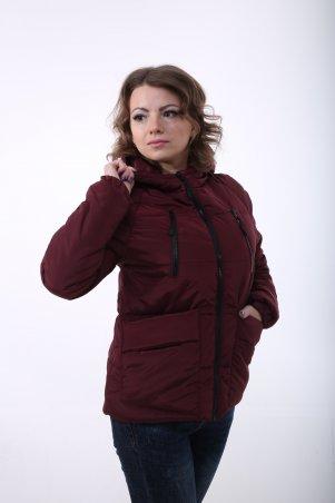 K&ML. Весенне-осенняя куртка. Артикул: 43