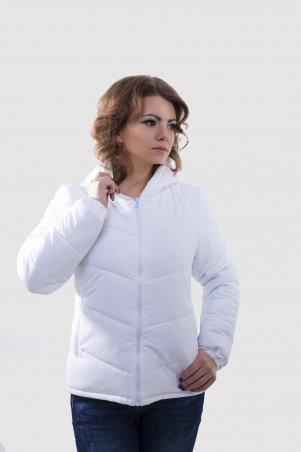 K&ML: Весенне-осенняя куртка 41 - главное фото