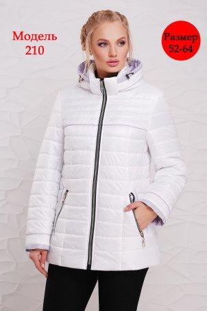Welly. Женская демисезонная куртка - 210. Артикул: 210