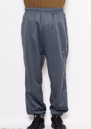 . Спортивные штаны. Артикул: GN-267_серый
