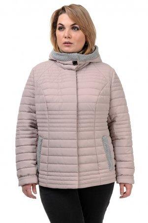 A.G.. Куртка демисезонная «Хильда». Артикул: 241 пудра