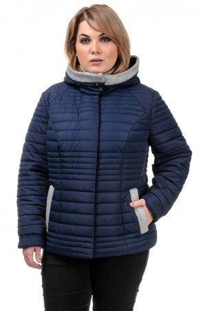 A.G.. Куртка демисезонная «Хильда». Артикул: 241 т.синий