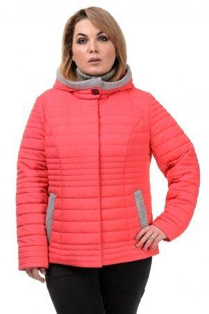 A.G.. Куртка демисезонная «Хильда». Артикул: 241 коралл