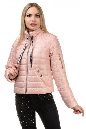 A.G.. Демисезонная куртка «Илва». Артикул: 238 пудра