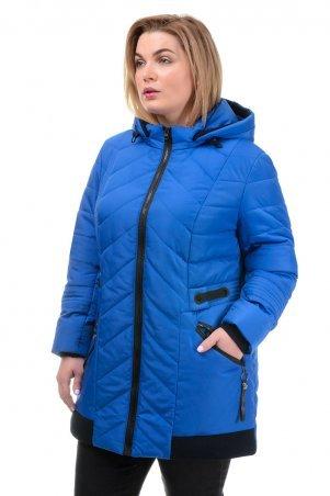 A.G.. Демисезонная куртка «Норма». Артикул: 242 василек