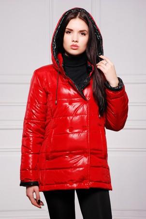 Vicco: Куртка SY - 04 (цвет красный) 2653 - главное фото