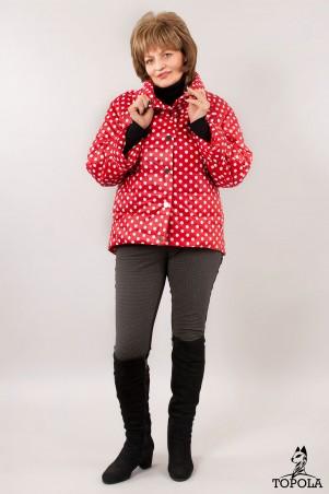 Topola: Куртка 1537_3 - главное фото