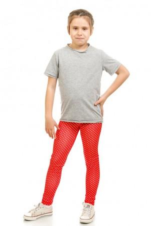 Kids Couture: Лосины красные горох 50011004 - главное фото