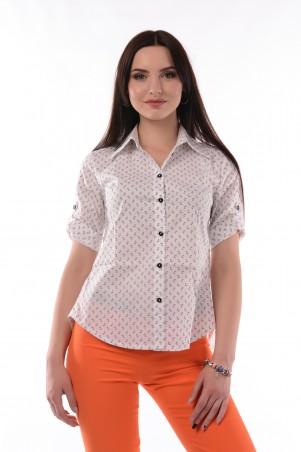 Tales: Стильная блузка Sandy blsn022 - главное фото