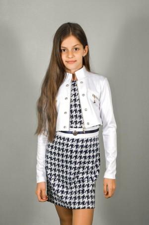 Leader Class Plus: Платье Двойка-спорт 1405 - главное фото