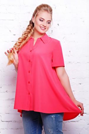 Tatiana: Блуза Клио - главное фото
