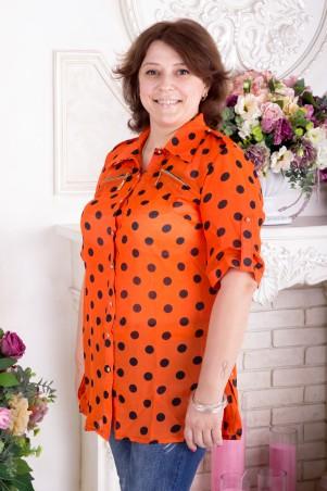 Larionoff: Рубашка Белла - главное фото