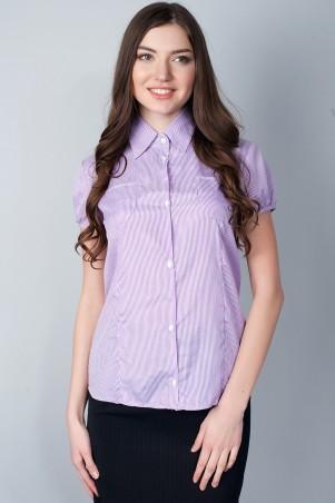 Meggi: Блуза-1 2215-1 - главное фото